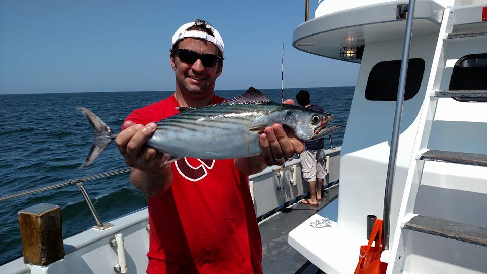 A bonito, also known as false albacore, hooked on board the Queen Mary party boat. (Photo: Queen Mary)