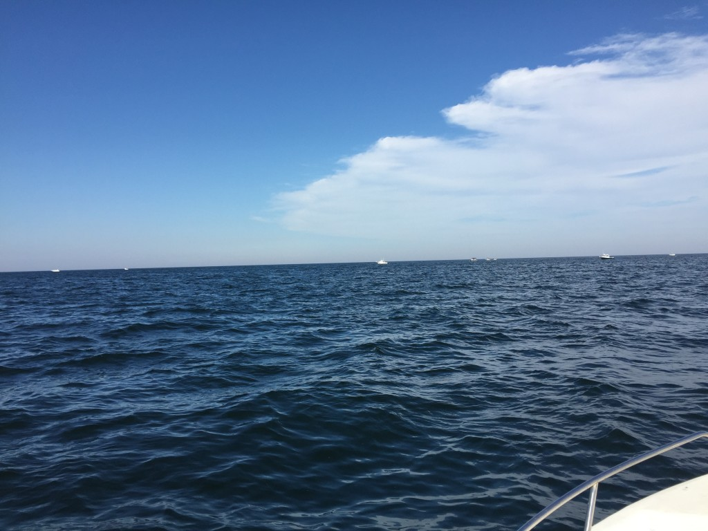 Fishing the Barnegat Light Reef, Aug. 2015. (Photo: Daniel Nee)