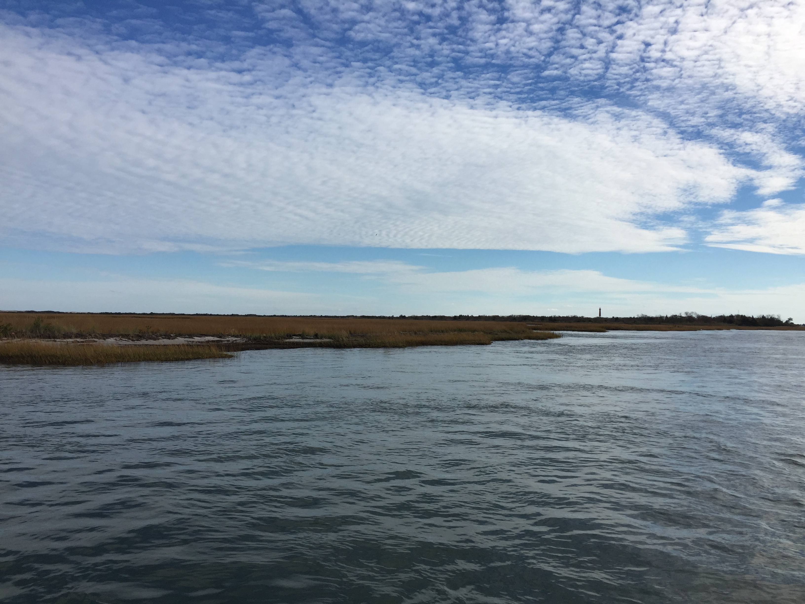 Sedge Islands, Barnegat Bay. (Photo: Daniel Nee)