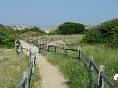Island Beach State Park. (File Photo)