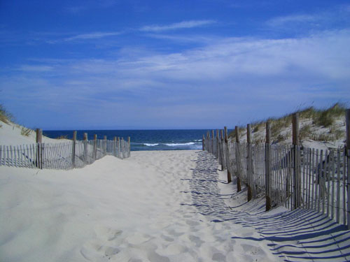 Dunes in Seaside Park (File Photo)