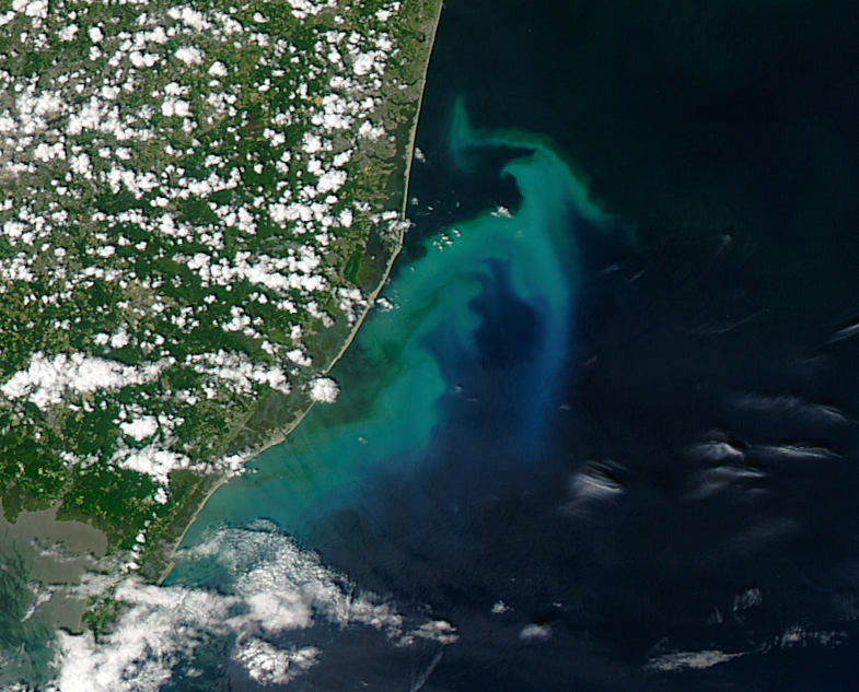 A phytoplankton bloom off N.J., captured from a NASA satellite. (Photo: NASA)