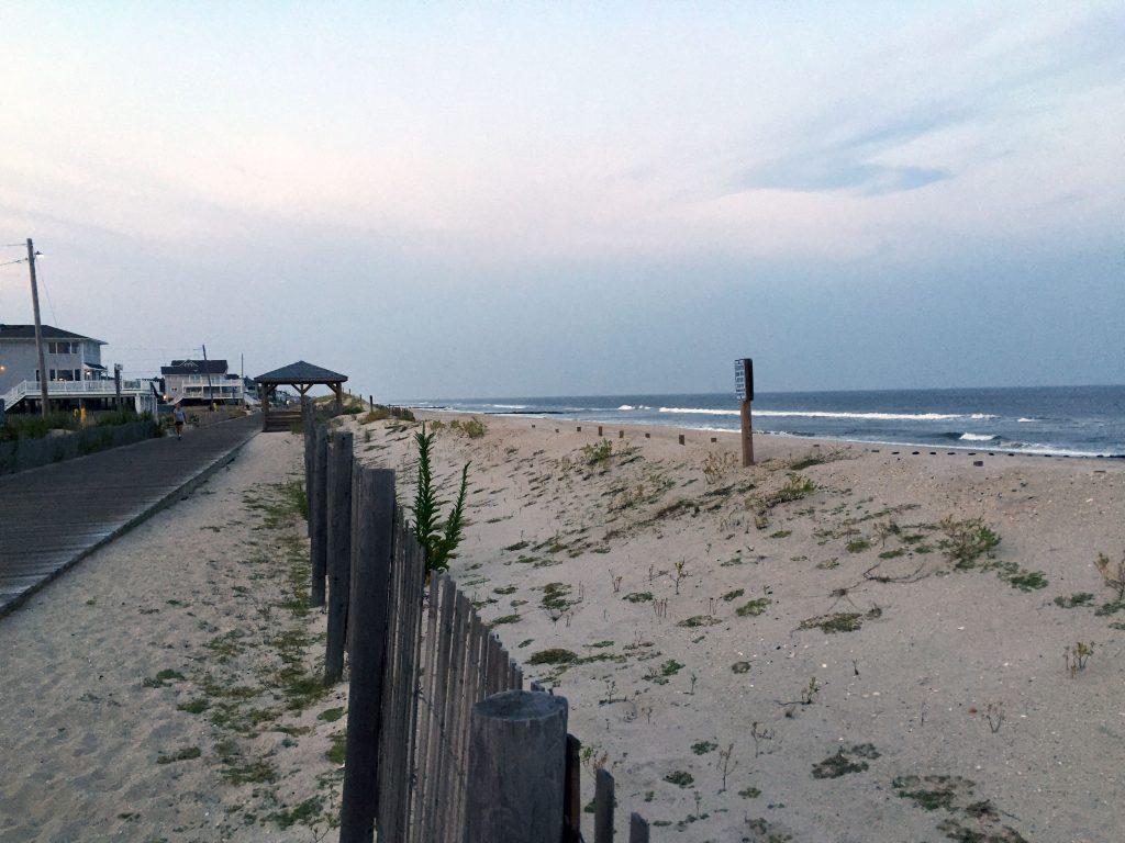 Lavallette's dunes, looking north from Newark Avenue toward Elizabeth Avenue. (Photo: Daniel Nee)