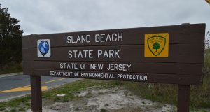 Island Beach State Park (Photo: Daniel Nee)