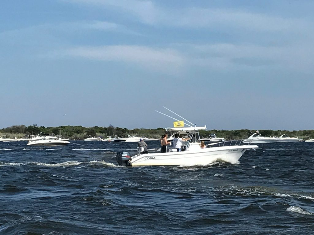 Boaters beating the heat at Tices Shoal, Sunday, June 11, 2017. (Photo: Daniel Nee)