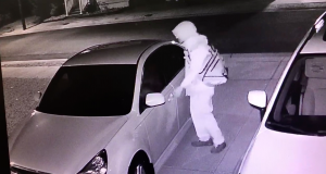 A suspected vehicle burglar in Seaside Park. (Photo: SPPD)