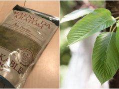 Kratom packaged for retail sale and kratom leaves in the wild. (Photos: Daniel Nee / NIH)