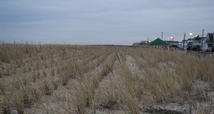 The Seaside Park boardwalk and dune line, Jan. 2020. (Photo: Daniel Nee)