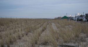The Seaside Park boardwalk and dune line, Jan. 2020. (Photo: Daniel Nee)