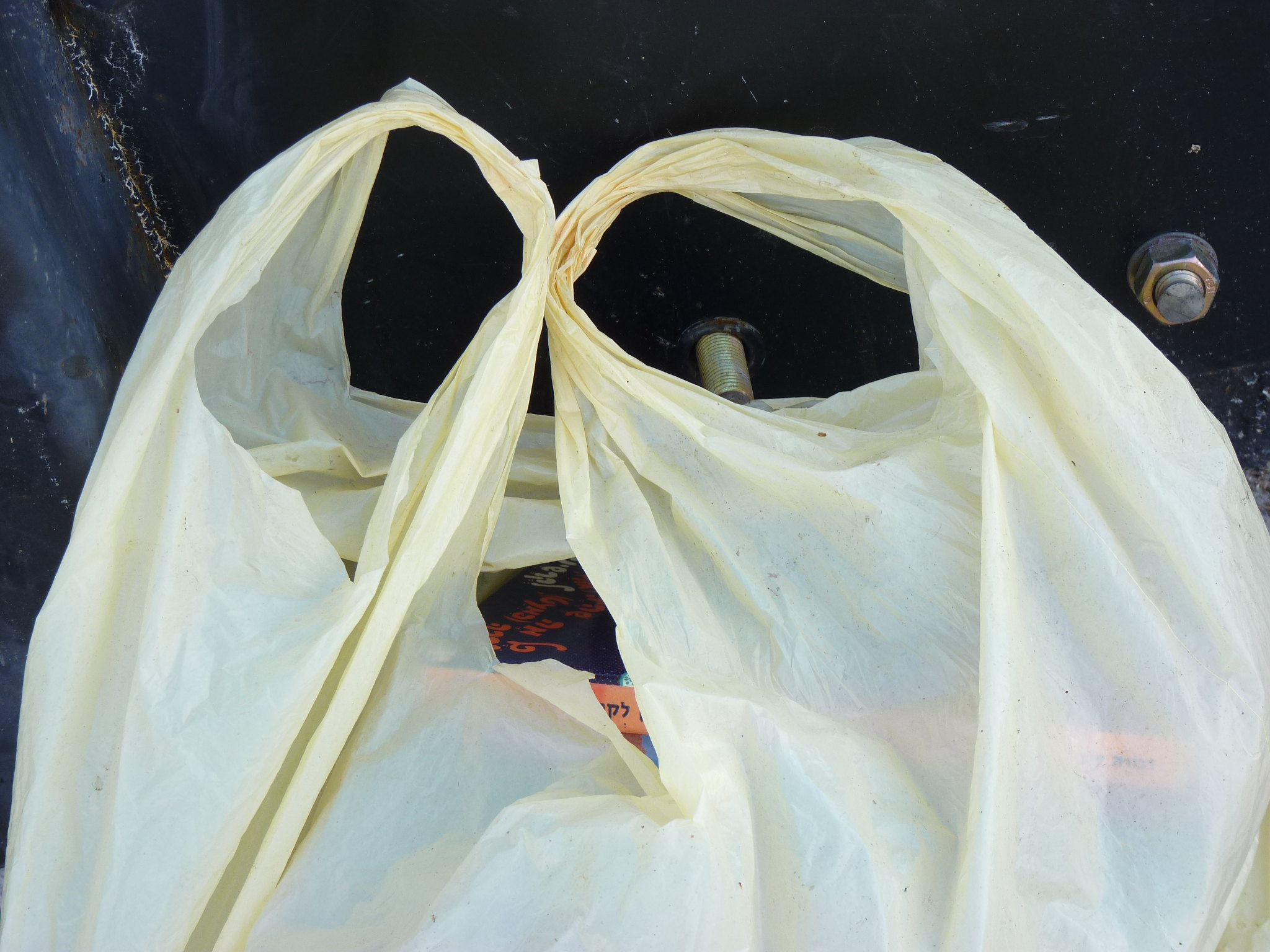 Plastic bag. (Credit: zeevveez/ Flickr)