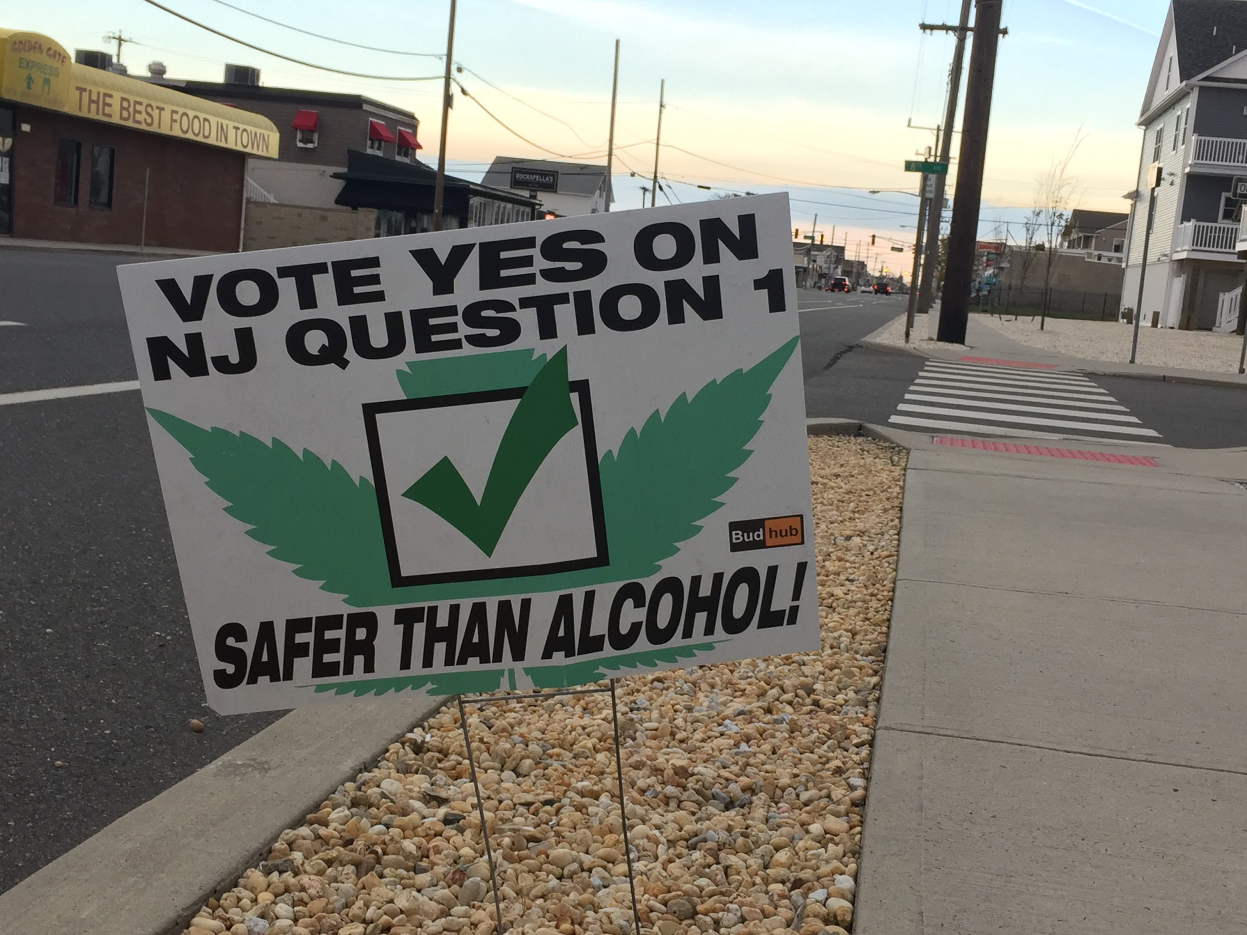 A lawn sign supporting the legalization of marijuana along Route 35 in Ortley Beach, Nov. 2020. (Photo: Daniel Nee)