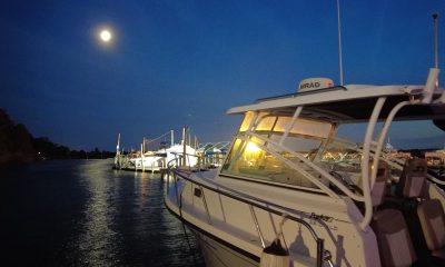 A brightly-moonlit night in Brick, N.J., Summer 2021. (Photo: Daniel Nee)